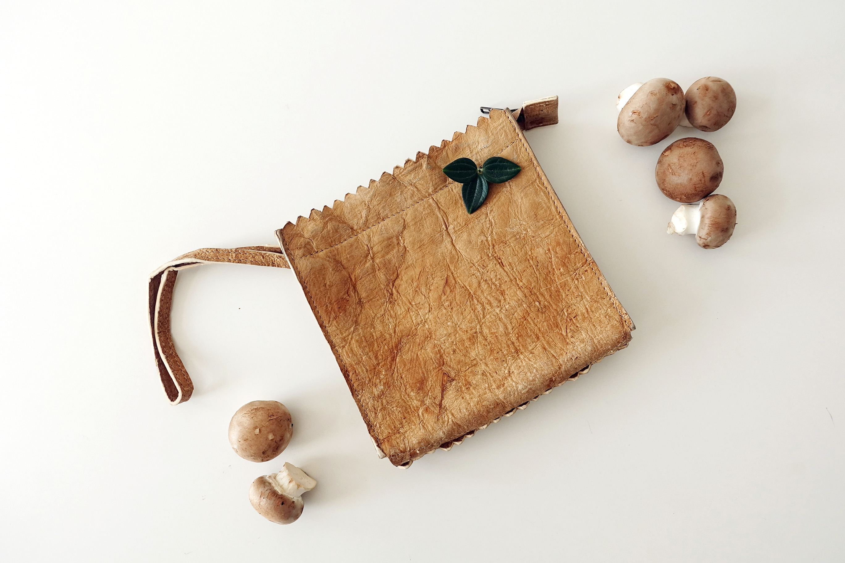 MYOMY mycelium bag